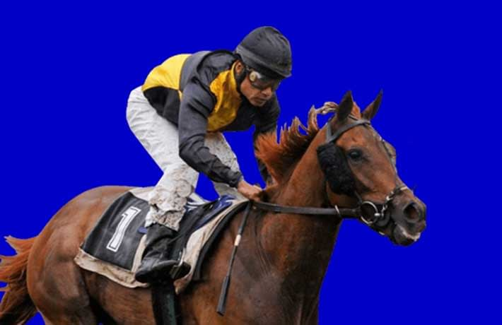 Geegeez Gold review